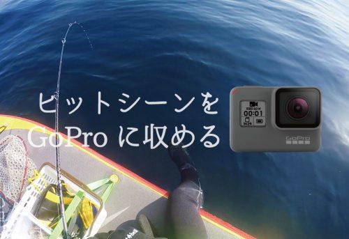 GoProで釣り動画を撮影しよう!おすすめの使い方や撮影のコツ