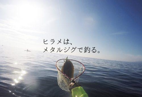 ヒラメをメタルジグで釣るためのアクションは?カラーは?重さは?