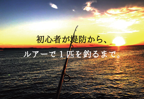 堤防ルアー釣りの基本をおさえて初心者が1匹を釣り上げる方法