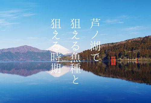 芦ノ湖釣りガイド|狙える魚と狙える時期を解説!