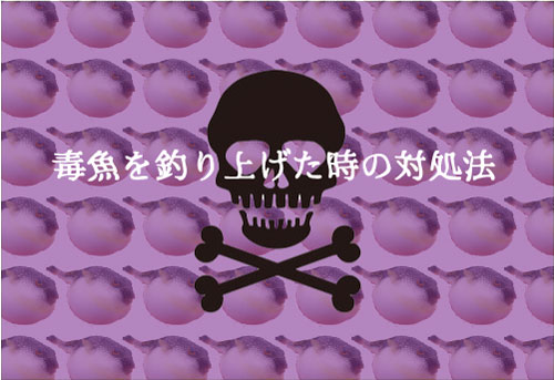 【危険】毒魚を釣りあげた時の対処法!代表的な毒魚を紹介