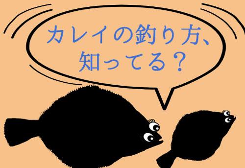 【カレイ釣り】堤防の投げ釣りから船まで!釣り方講座