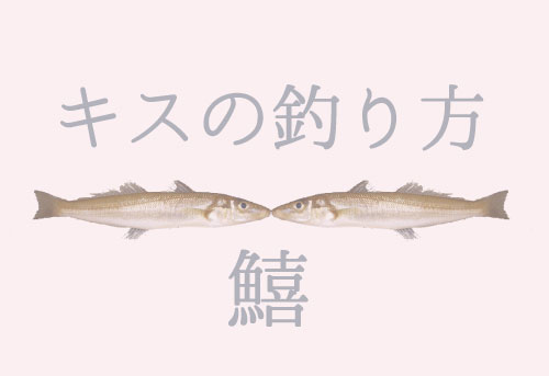 キスの釣り方|仕掛けや時期、餌、場所などを詳しく解説