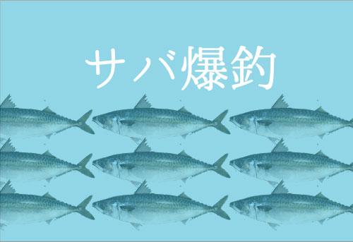 サバの釣り方と仕掛け|初心者でも爆釣できるコツ公開