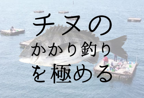筏釣り(チヌのかかり釣り)の仕掛けと釣り方