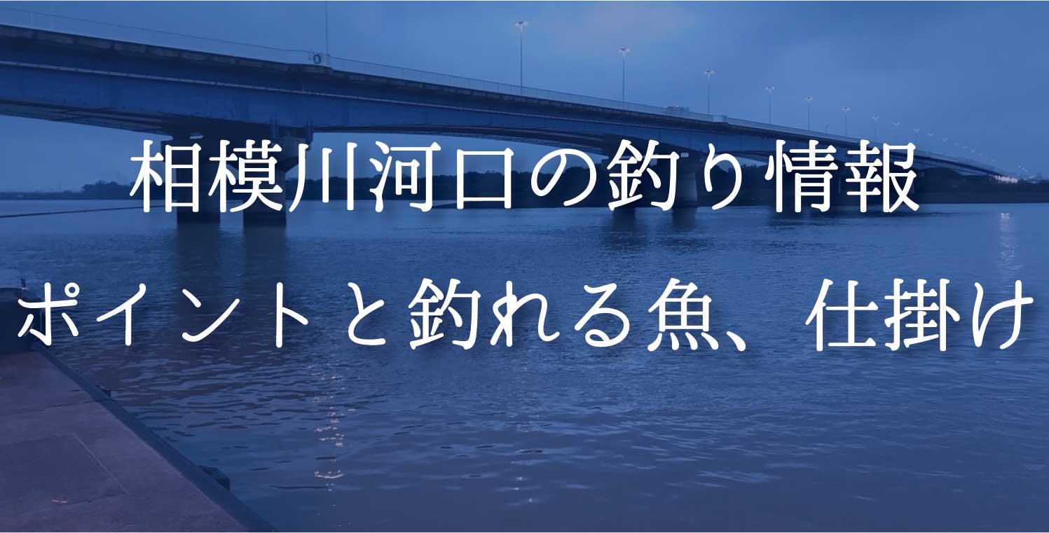 相模川河口の釣り情報|ポイントと釣れる魚、仕掛けを紹介